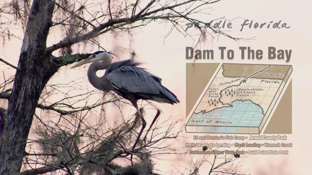 Paddle Florida: Dam to the Bay