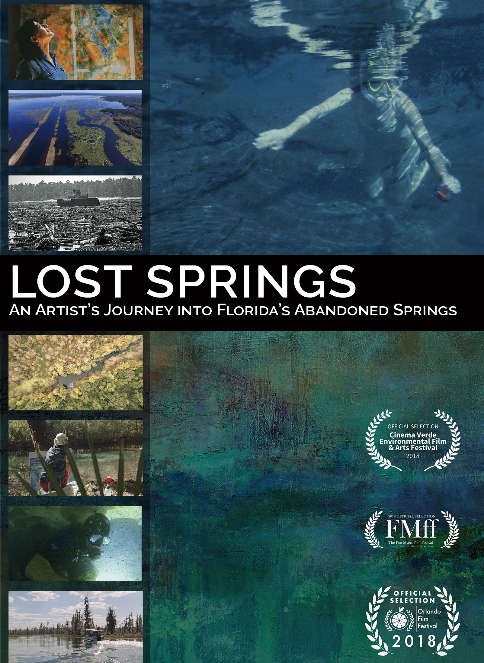 Front Cover of Lost Springs DVD