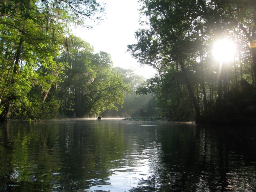 Ryan Cantey paddles the upper Ocklawaha as sun breaks through the trees.