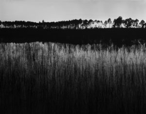 Twilight at Crooked Sapling Pond. Juniper Wilderness Area, 2019.