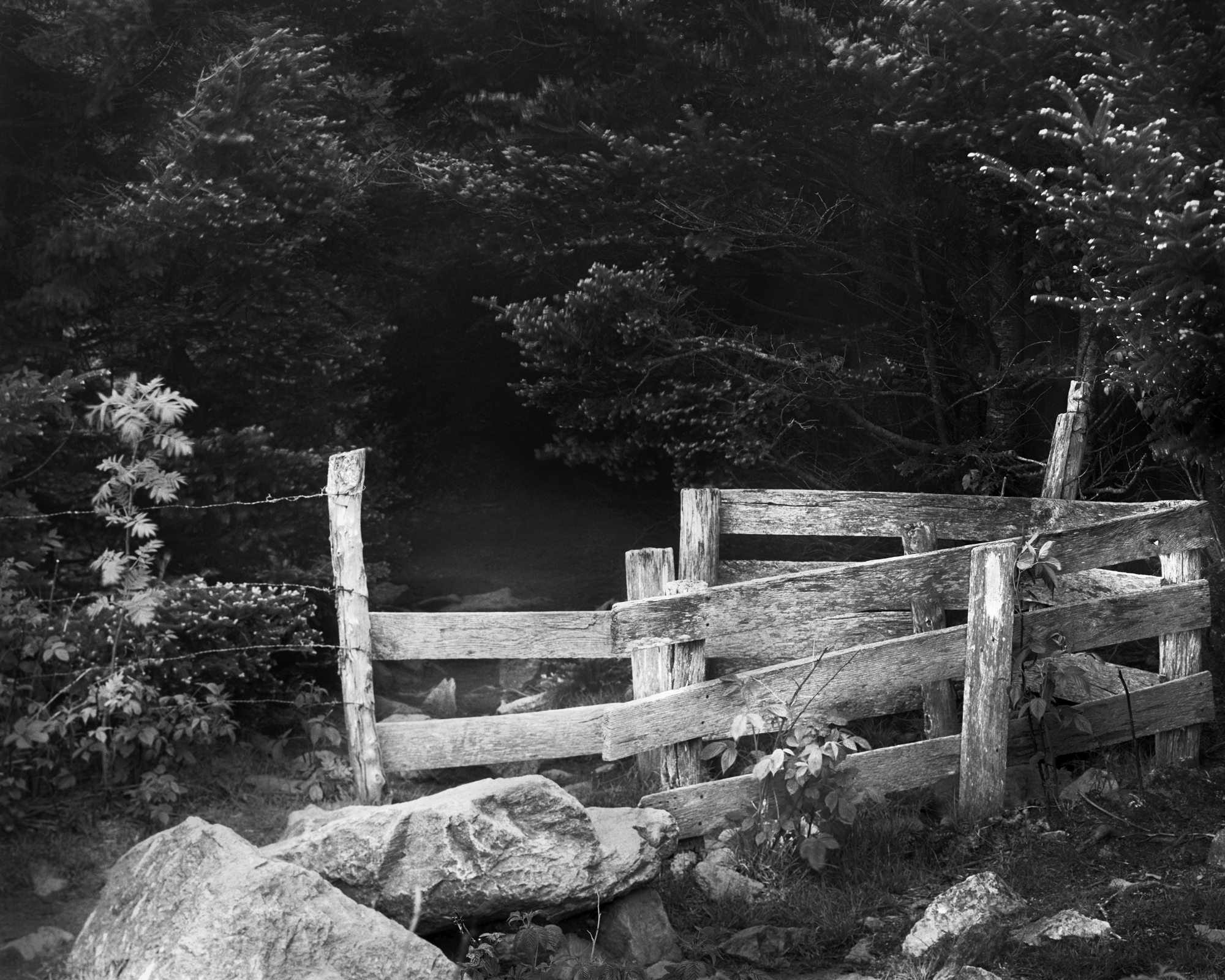 Wooden Stile at 499N, Appalachian Trail, Virginia. 2020
