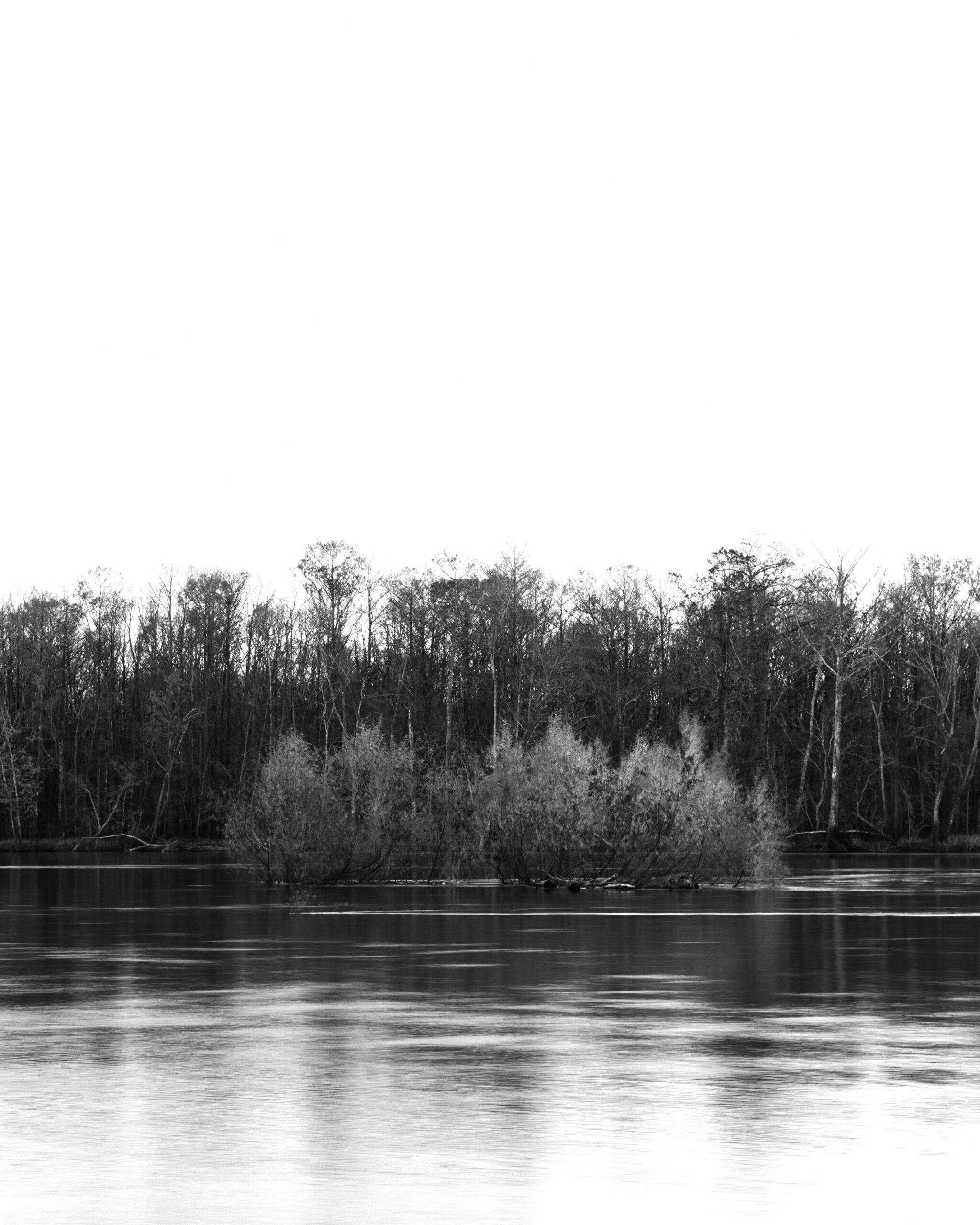 Apalachicola River 1, Florida. 2020