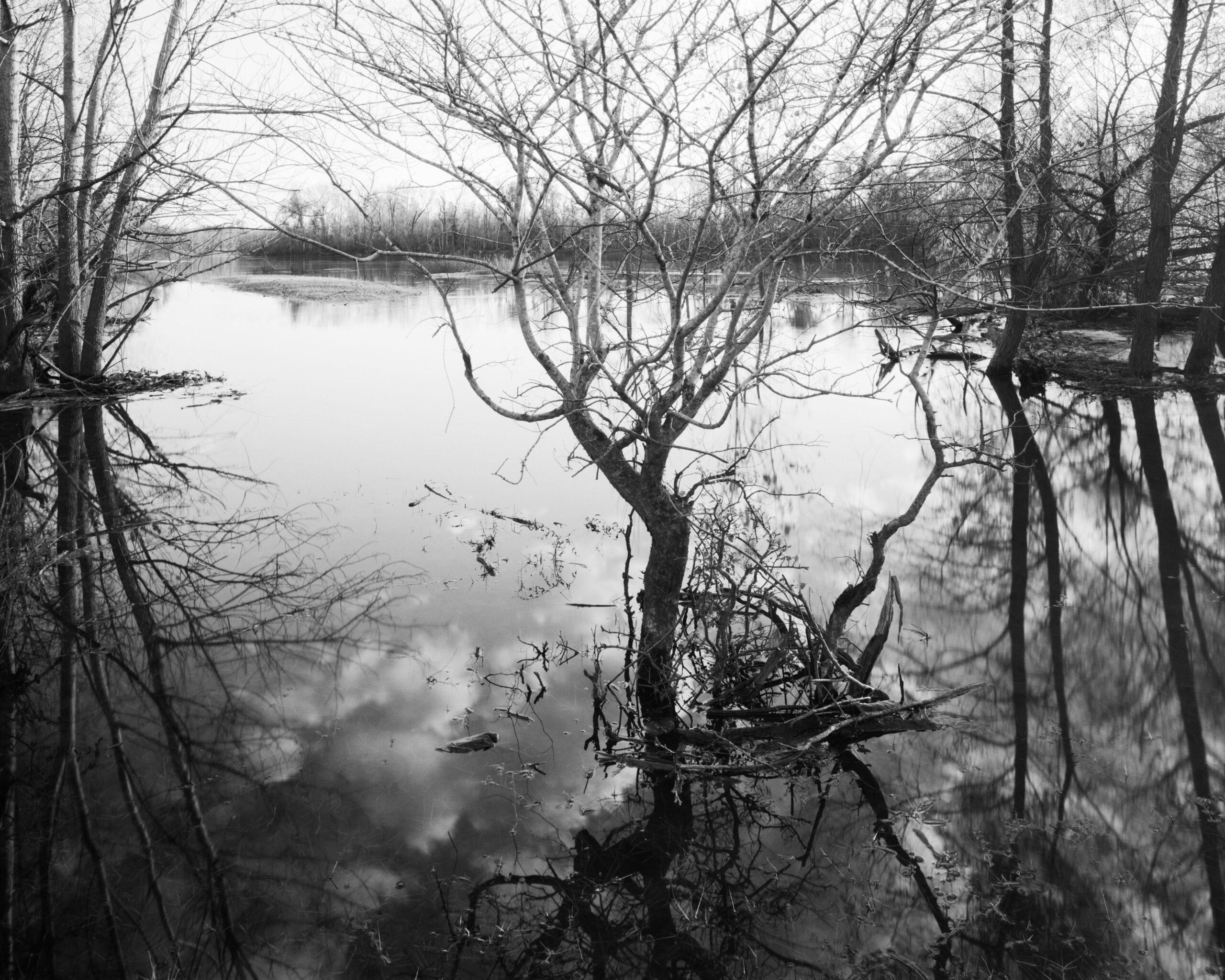 Apalachicola River 3, Florida. 2020